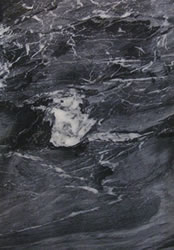 Black Spider Marble Close Up